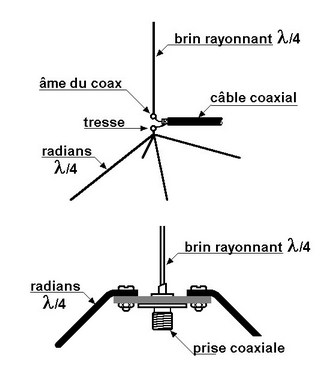 Vertical antenna with inclined radians